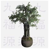 仿真树(The simulation tree)